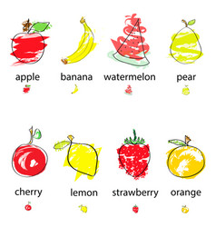 hand drawn artistic fruits vector image