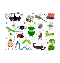 Cute insects reptiles Bee grasshopper vector image vector image