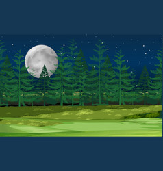 a night forest landscape vector image