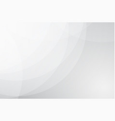 abstract white background with curve softlight vector image