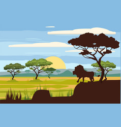 african landscape lion savannah sunset vector image