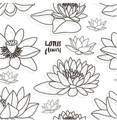 Set of lotus flowers pattern vector