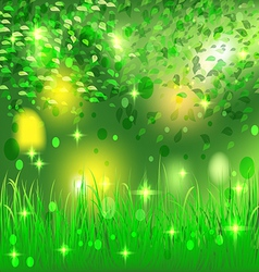 beautiful bright abstract forest vector image