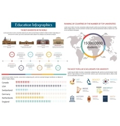 Education infographics of the best universities vector image