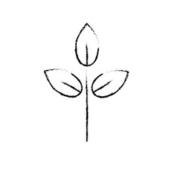 Figure natural plant with leaves design to ecology vector