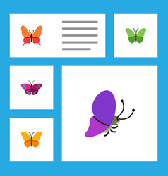 Flat butterfly set of milkweed summer insect vector