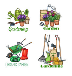 gardening banners sketch vector image