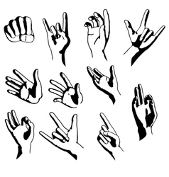 Hands in different positions vector