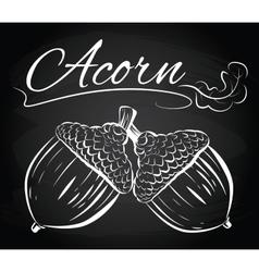 oak branch two acorns vector image