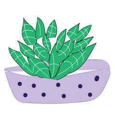 purple vase with blue dots and green plant on vector image