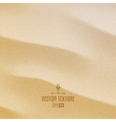 Sand Texture vector image