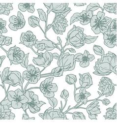 seamless pattern blooming buds jasmine vector image