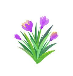 spring garden flower bouquet background vector image