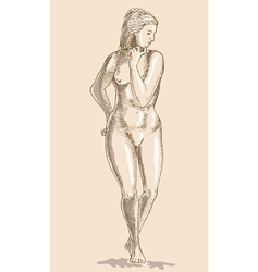 Drawing of the female human anatomy figure vector image vector image