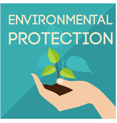 Environmental protection hand support sapling gree vector