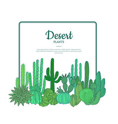 Hand drawn cacti plants cactuses pattern vector