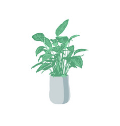 home flower in a flowerpot green plant with vector image