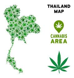 Marijuana composition thailand map vector