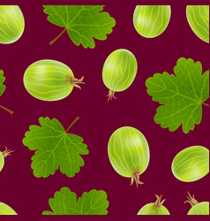 realistic detailed 3d gooseberries with green vector image