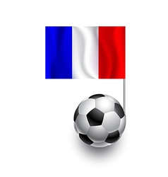 Soccer Balls or Footballs with flag of France vector image
