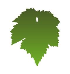 Vine leaf vector