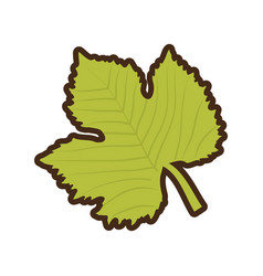 grape leave natural icon vector image