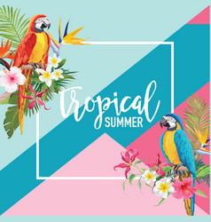 tropical flowers and parrot birds summer banner vector image vector image