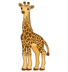 with cartoon giraffe vector image