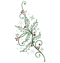 Holly branch with berries vector image vector image