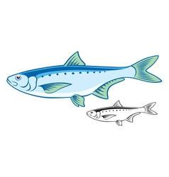 Sardine vector