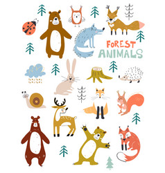 woodland animals character great for vector image
