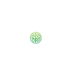abstract tree sign botany logo vector image