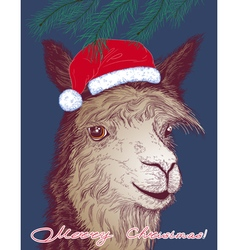 Alpaca in Santa Claus hat vector