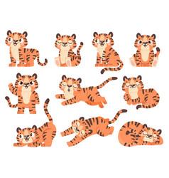 Cute baby tigers cartoon jungle animal for kids vector