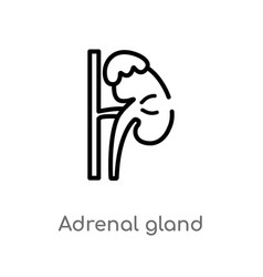 Outline adrenal gland icon isolated black simple vector