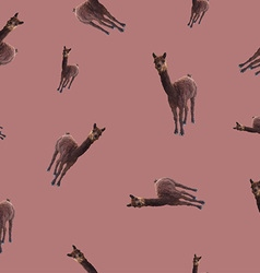 patternseamless with the image of a llama vector image