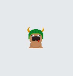 pixel art pug vector image