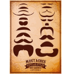 Set different male mustache on a grungy background vector
