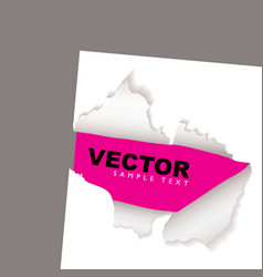 torn paper reveal pink vector image vector image