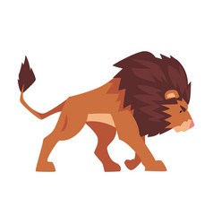 Walking lion proud powerful mammal jungle animal vector
