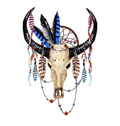Bull Skull Feathers4 vector image vector image