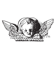 Cherub head is in early italian renascence vector