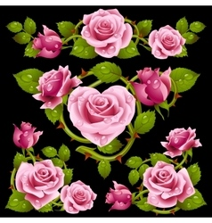 Pink Rose design elements vector