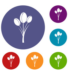 Tulips icons set vector