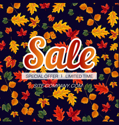 vivid template of seasonal sale banner vector image