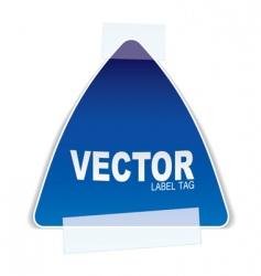 triangle paper tag tape vector image vector image