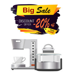 big sale discount offer advert vector image