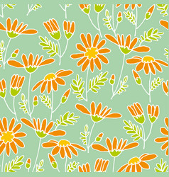chamomile hand drawn seamless pattern vector image