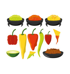 chili pepper mexican traditional food vector image
