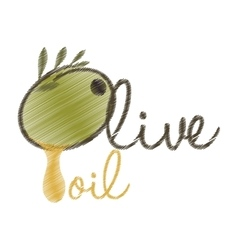 drawing lettering olive oil design vector image